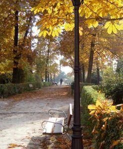 Farola 2 luces PARIS negra ambiente