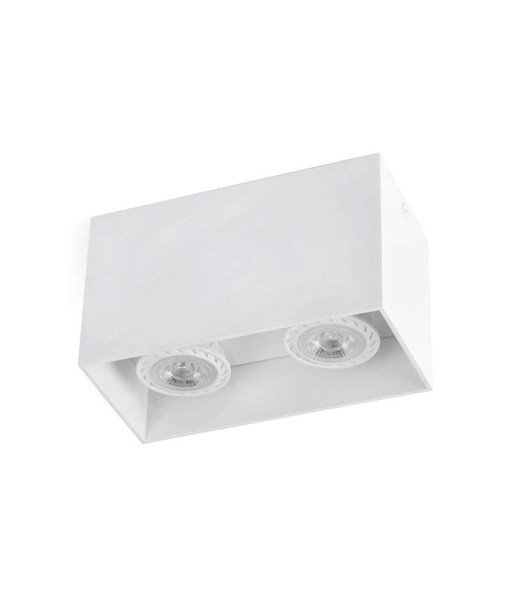 Plafón 2 luces blanco TECTO