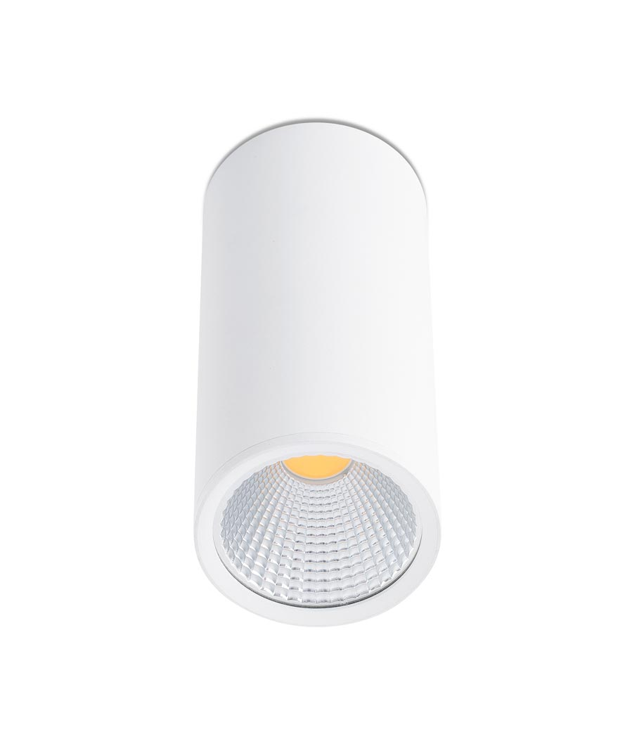 Plafón LED pequeño blanco REL