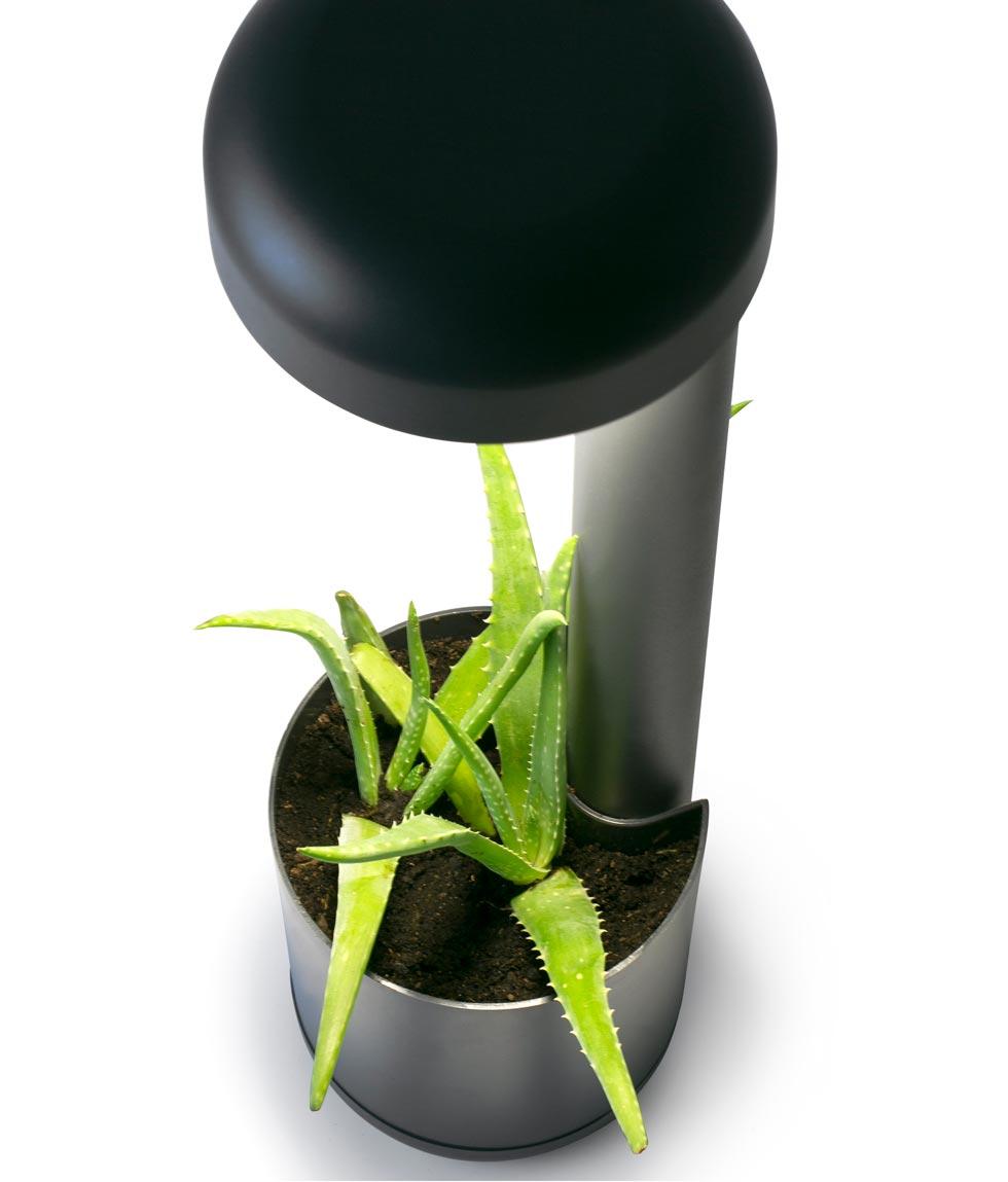 Baliza 50 cm GROW LED gris oscura detalle