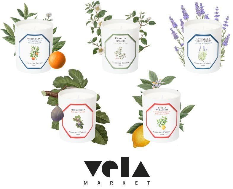 Velas aromáticas decorativas - Vela Market