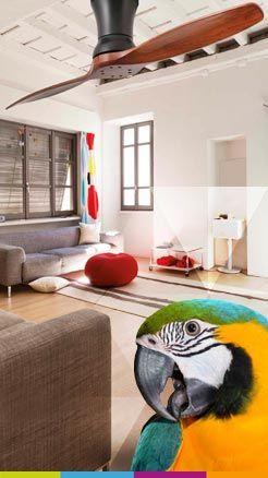 Novedades y ofertas en ventiladores